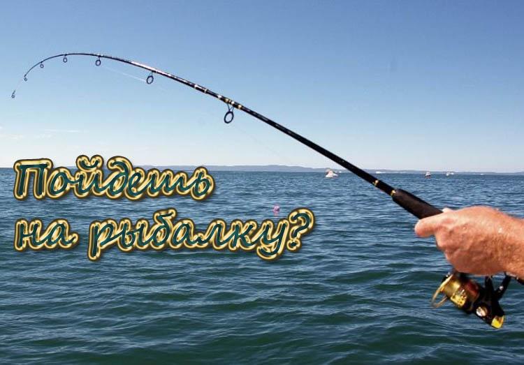 когда идти на рыбалку на щуку