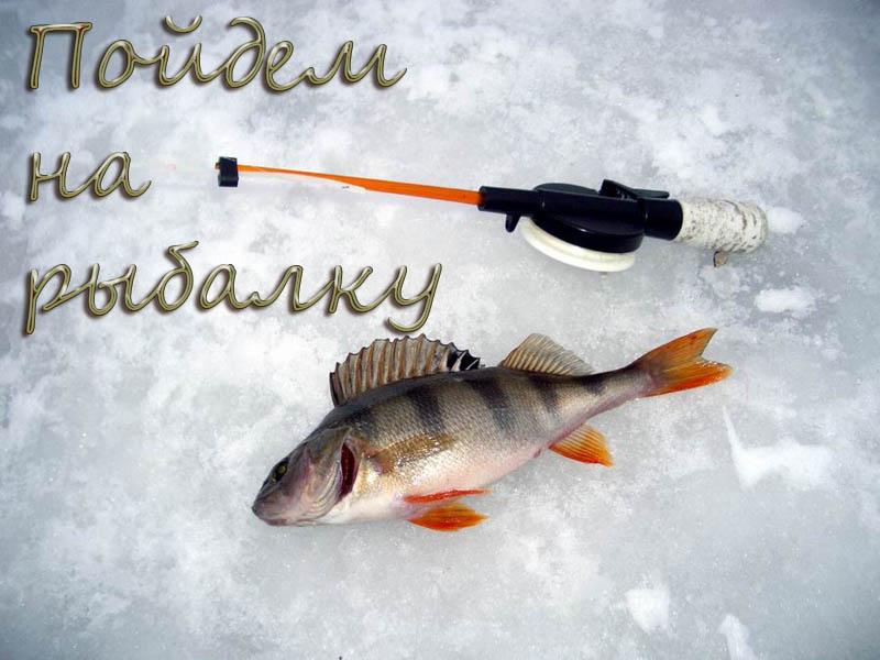 приходи на рыбалку