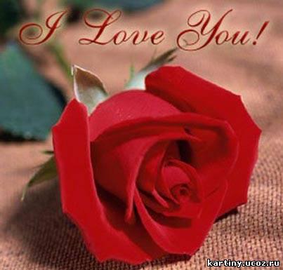 my love for you скачать бесплатно